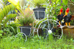 Garden Decor Using a Bicycle and Garden Decor Plant Stand in Thailand