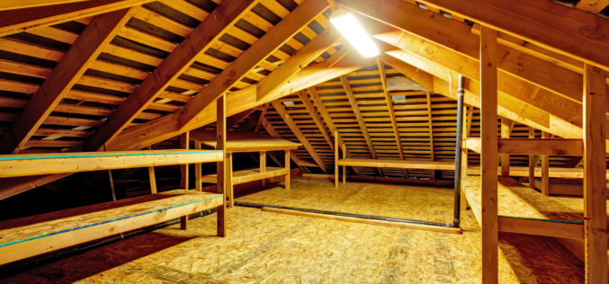 What Is In Your Attic Besides …?