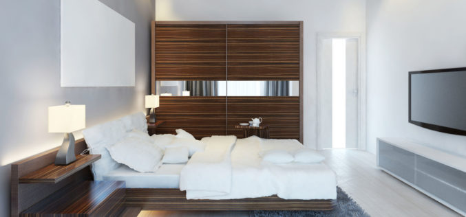 Design of Modern Spare Bedroom with Large Sliding Closet