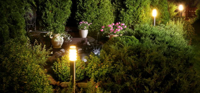 Letting Your Garden Shine