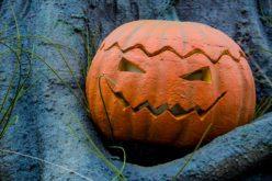 Halloween Pumpkin Displays for Exterior Home