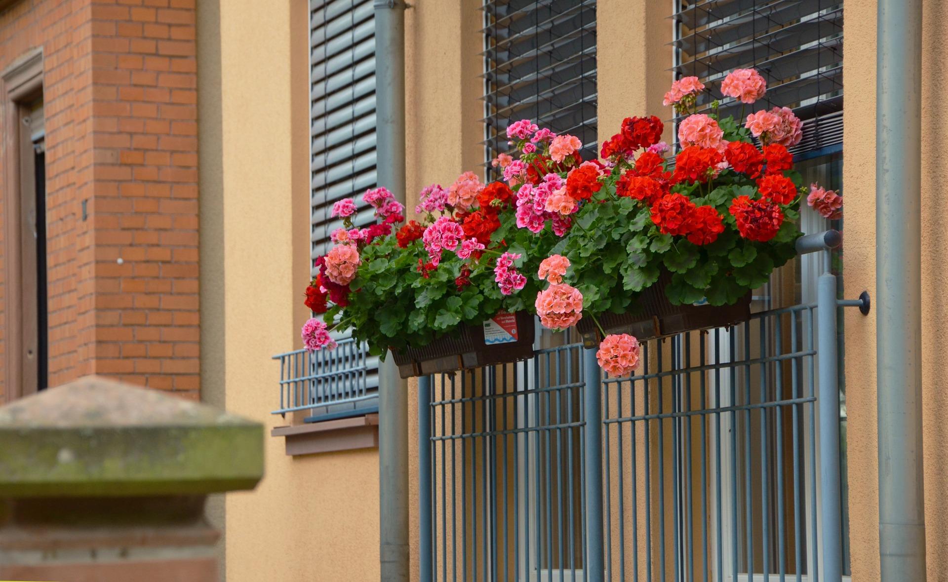 balcony window box