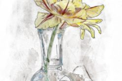 Using a Common Jar Bottle for a Beautiful Flower Vase
