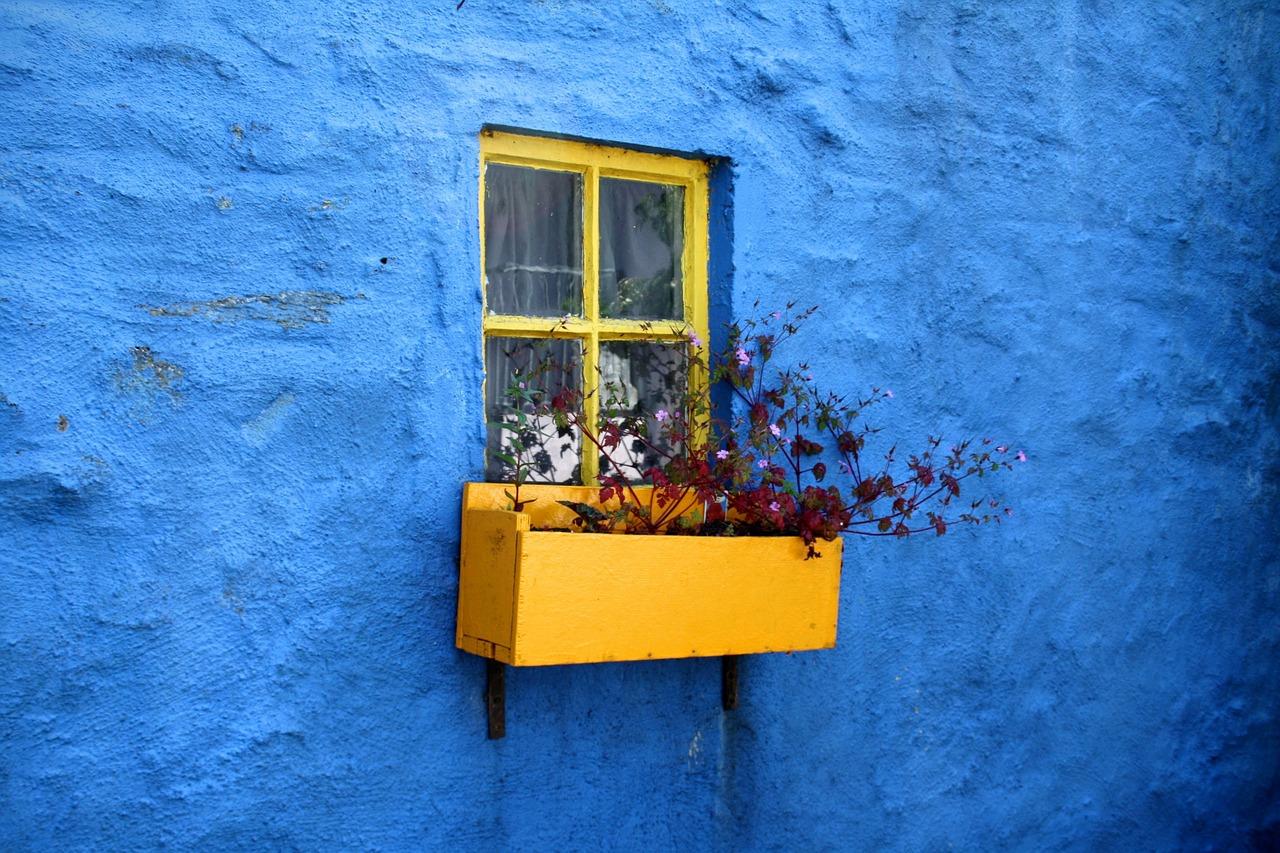 yellow window bos