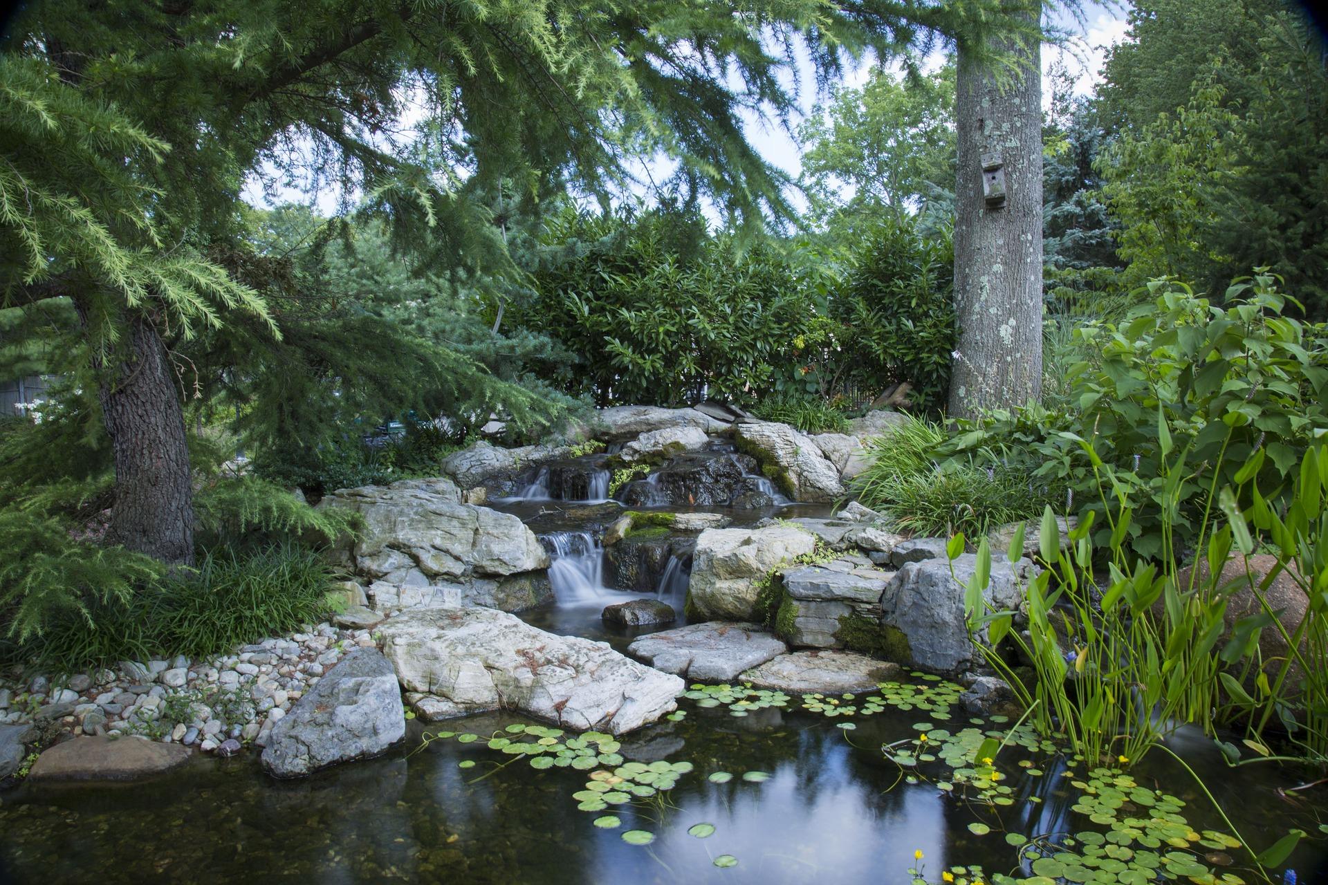 garden water pond