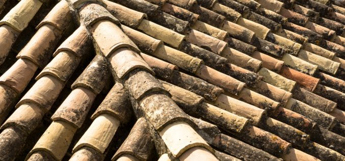 The Beauty and Durability of a Clay Tiled Roof