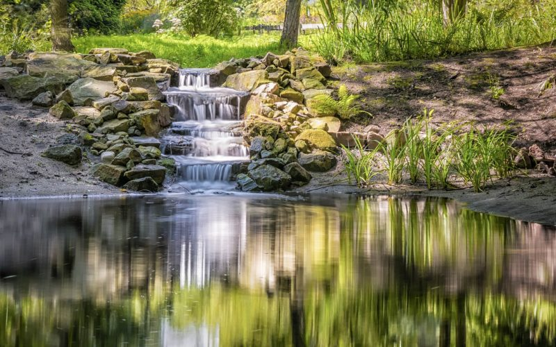 Backyard Pond with a Simple Waterfall