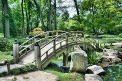 Wooden Garden Bridge Over Small Water Stream