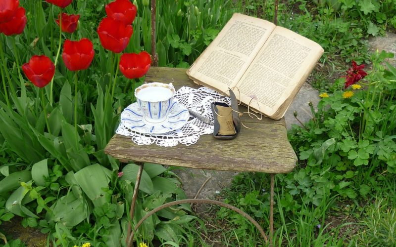 Finding Comfort When Reading Outside