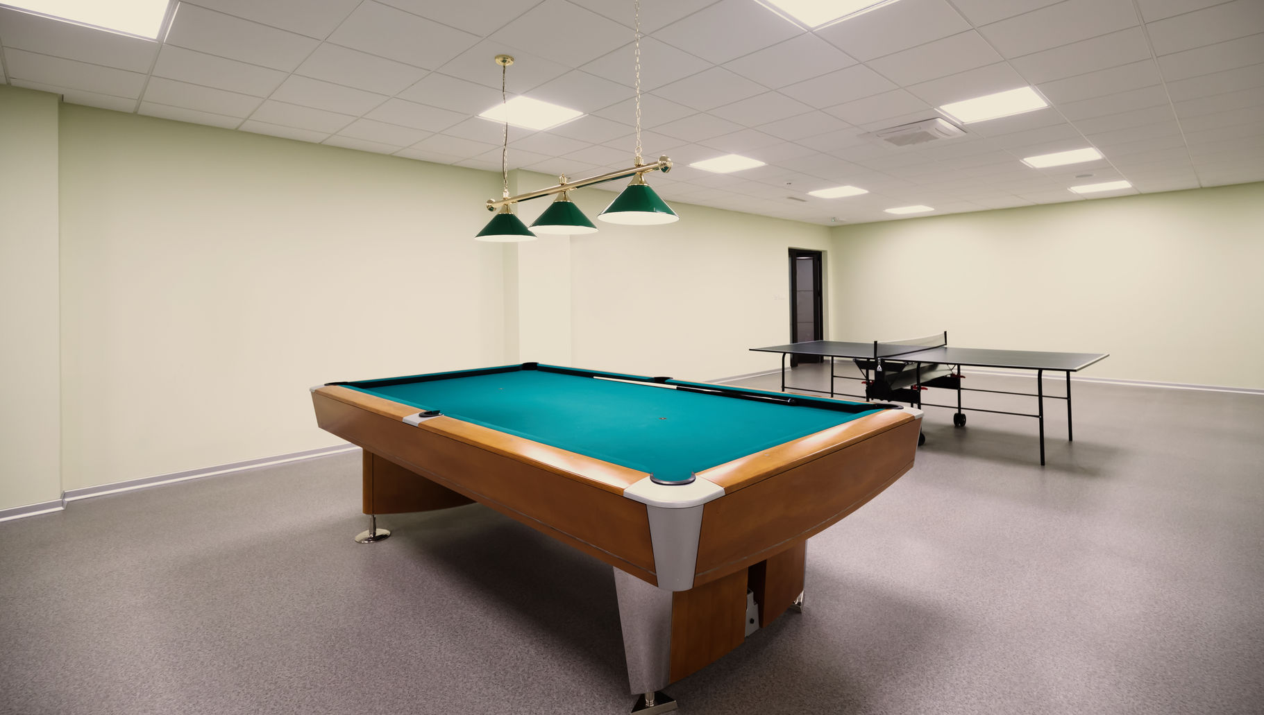 billiard table and table tennis