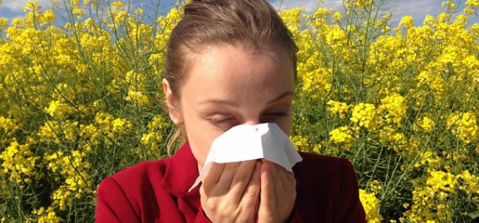 Keeping Your Home Free From Spring Allergens