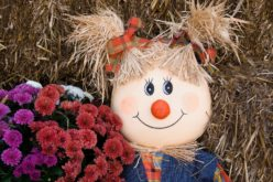 Girl Scarecrow with Fall Mums