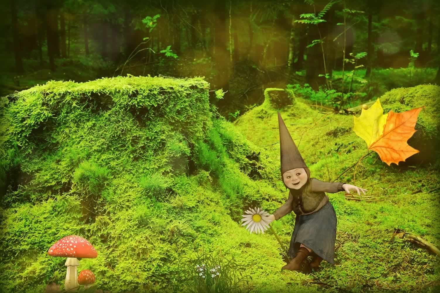green forest gnome