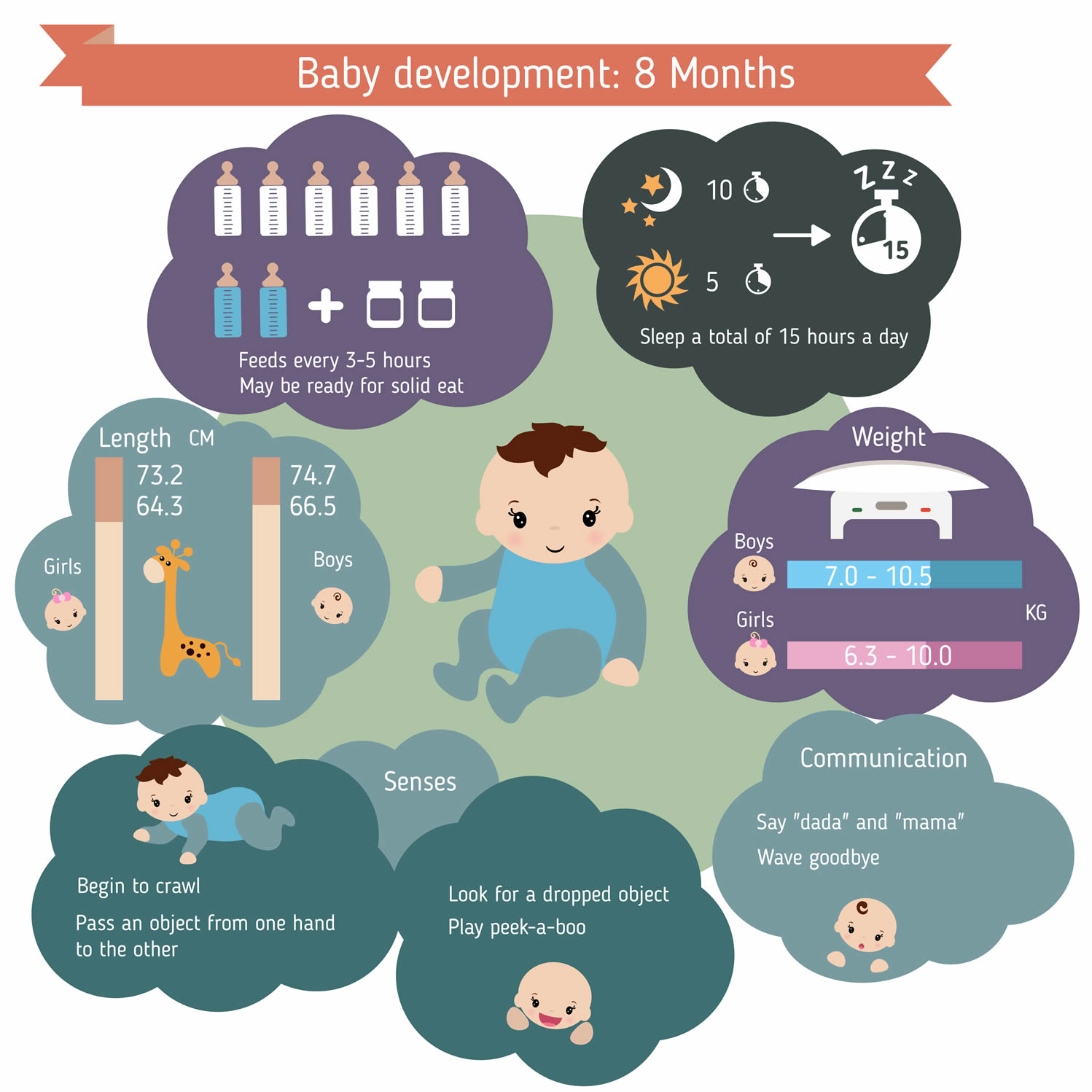 8-month infant care guide