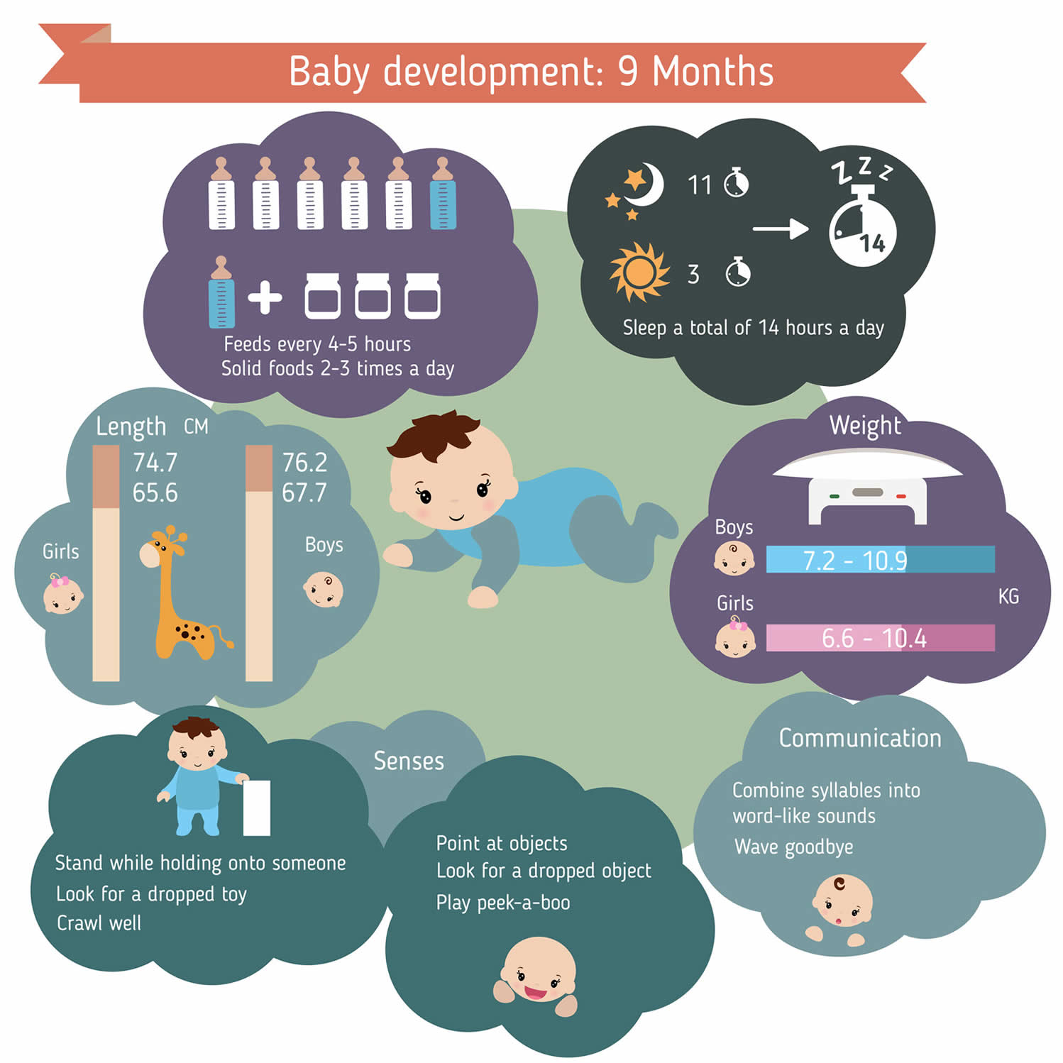 9 month infant care guide