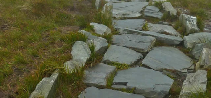Stone Paving for Side Yard and Patio
