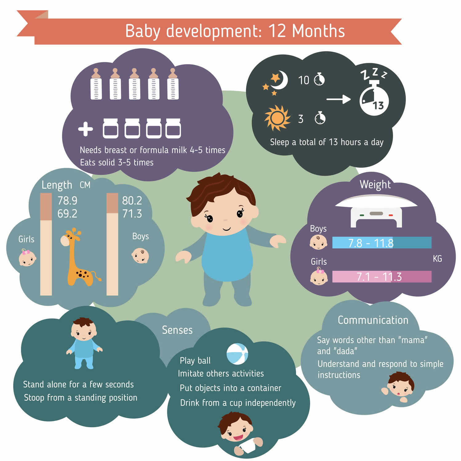 12 month infant care guide