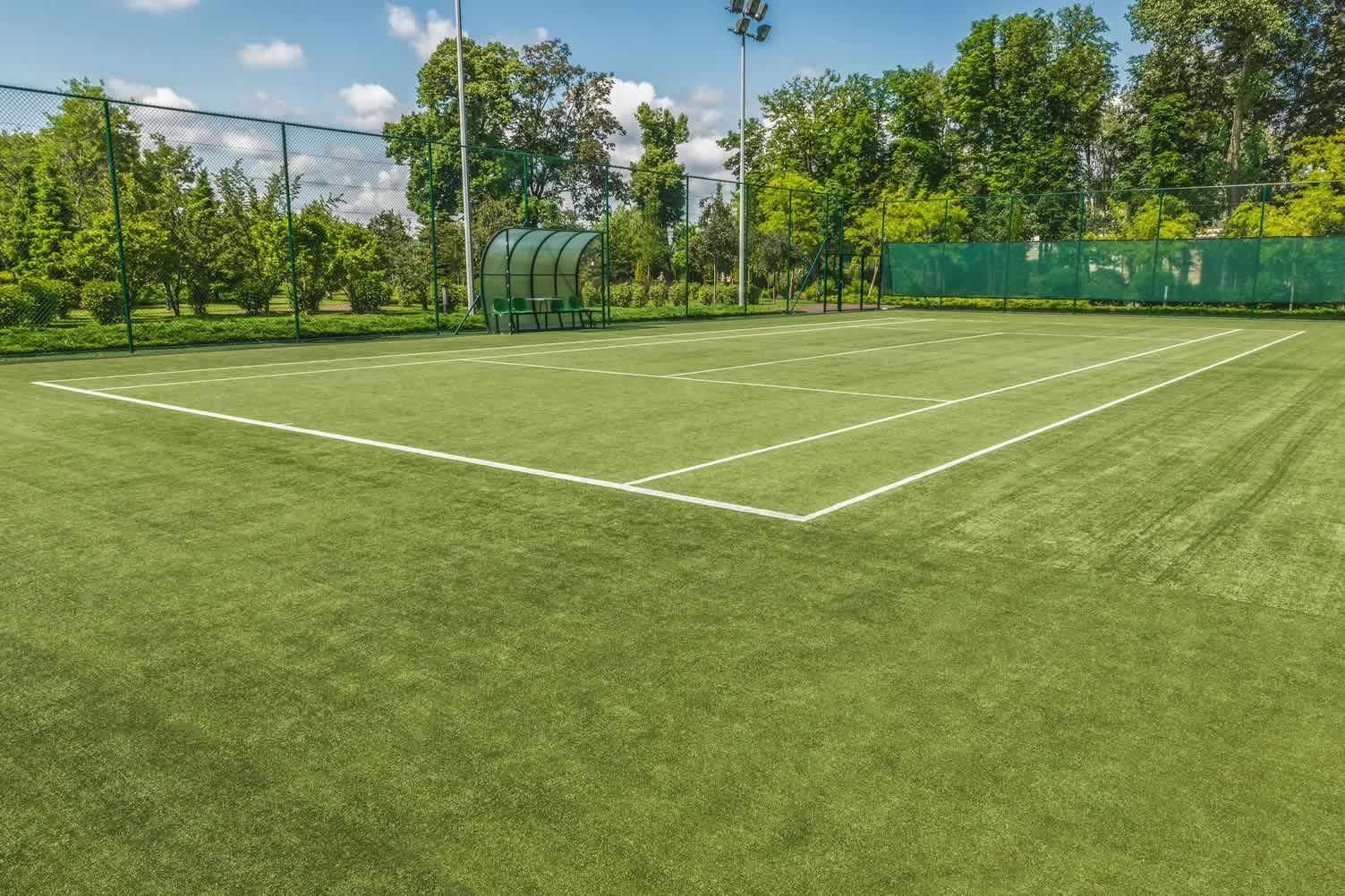yard tennis court
