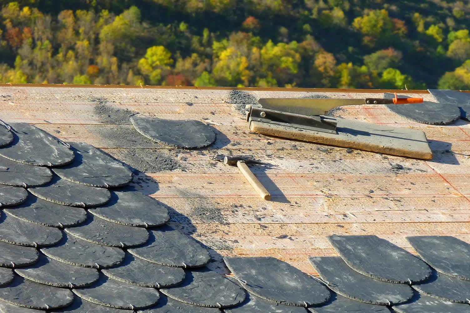 repair replace roof