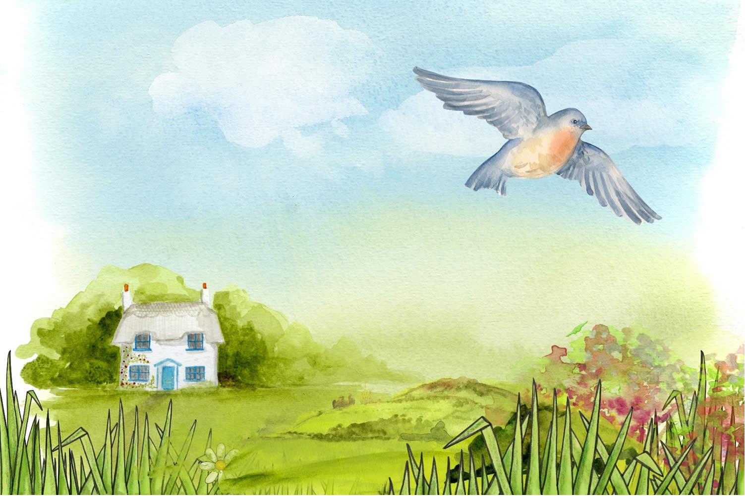 summer home renovation planning