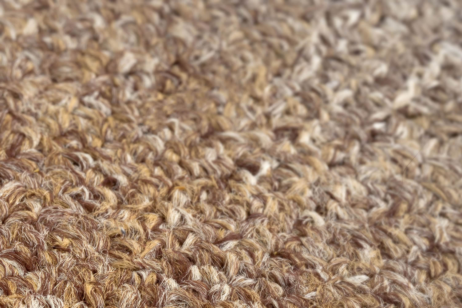 carpet sample