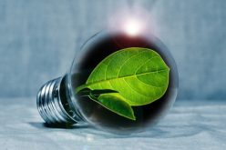 Comparing Energy Efficient Light Bulbs