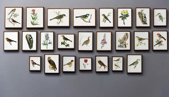What To Do With Your Walls – Some Creative Wall Decor