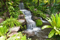 <span>photo image analysis:</span> Using a Garden Waterfall in Your Landscaping Design