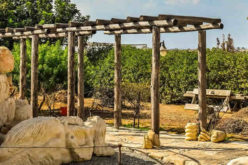 Adding a Pergola For Garden Decor or Shade