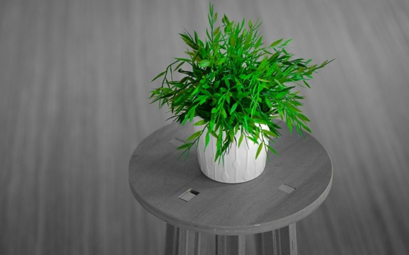 Decorative Plant Stands as Decor