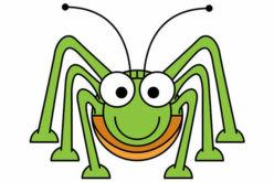 Keeping Pests Out Your Home