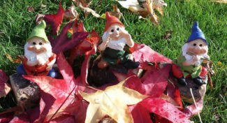 Autumn Gnomes: Perfect Decor for the Fall Season