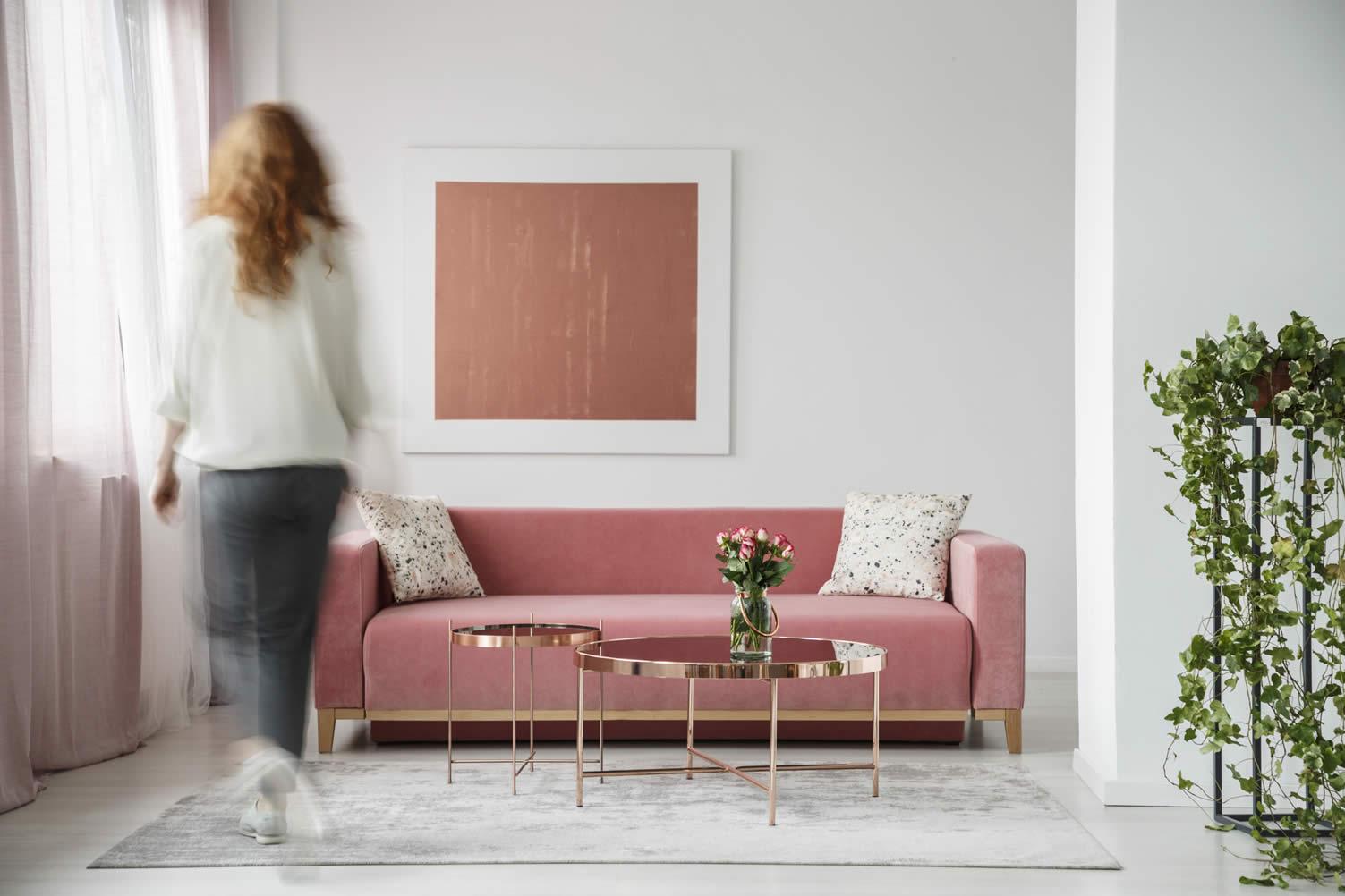 color light rose furniture