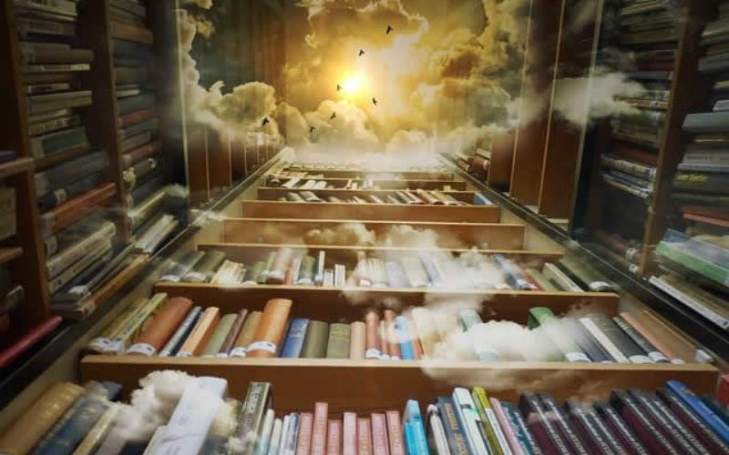Let's View How to Store Books Using Bookshelf Ideas