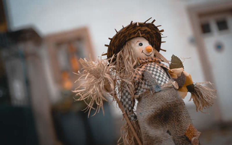 Time for the Scarecrow to Come Down