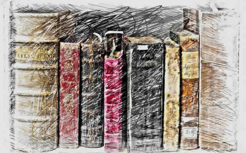 Background Wall Color for Classic Book Collection