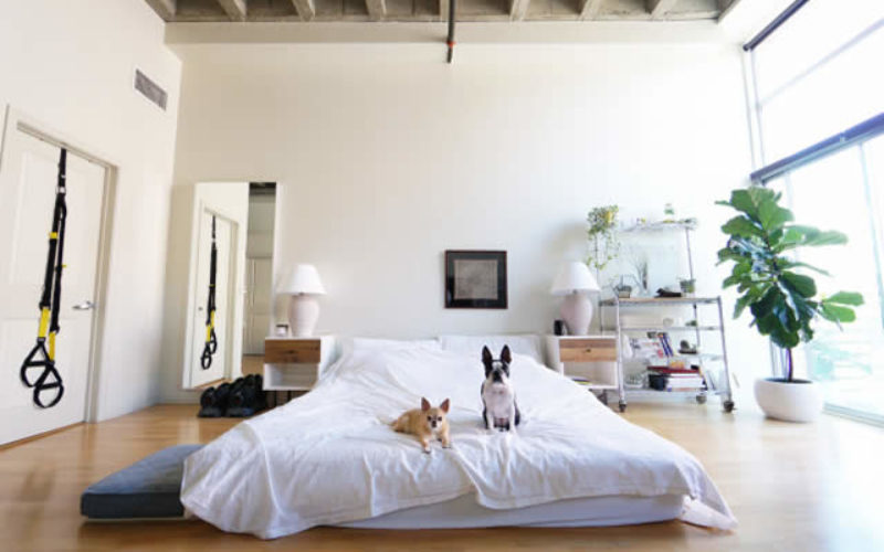 5 Items to Save Money on When Moving Into Your First Apartment