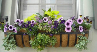 How To Install Window Boxes on Different Exteriors
