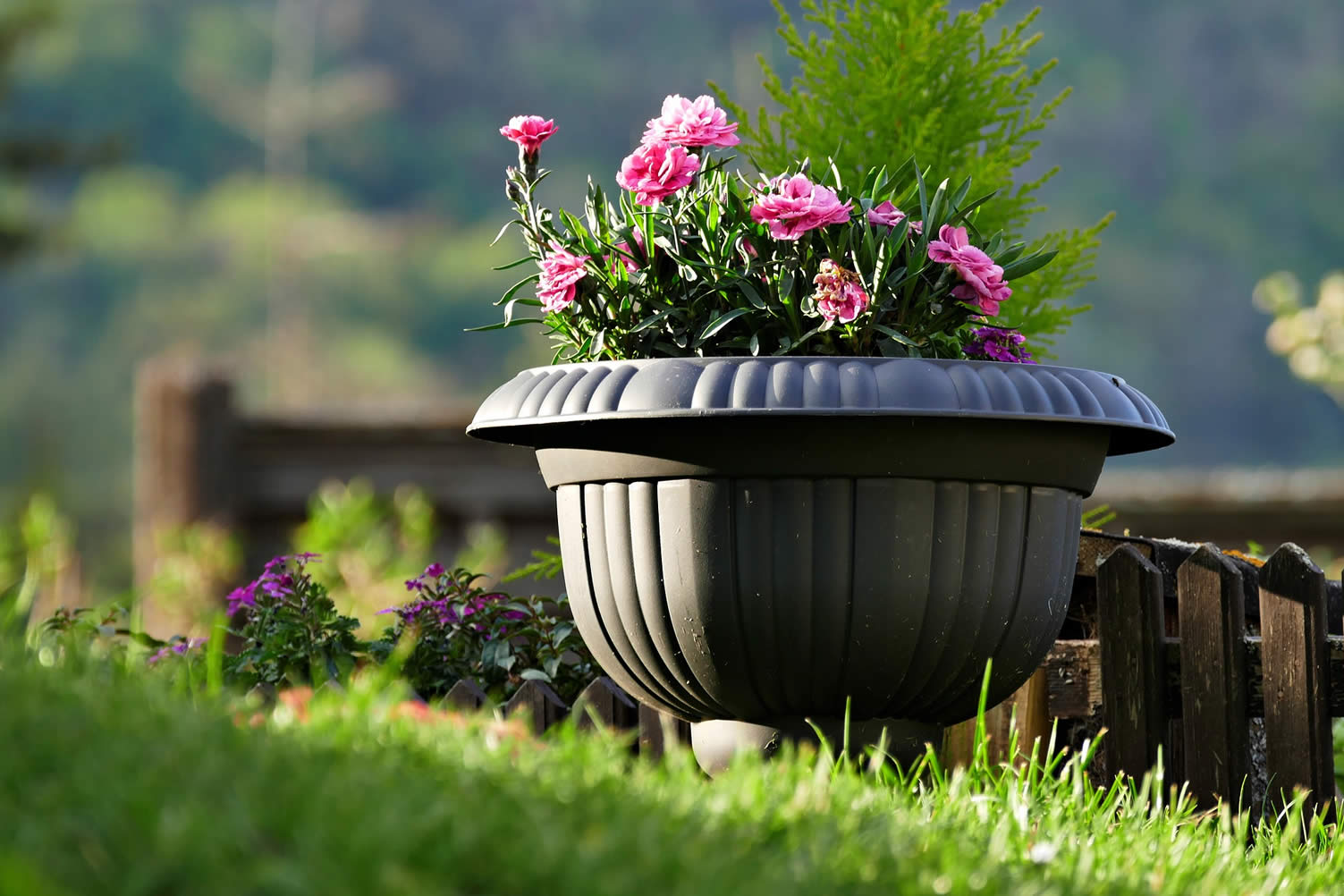 garden decor tips