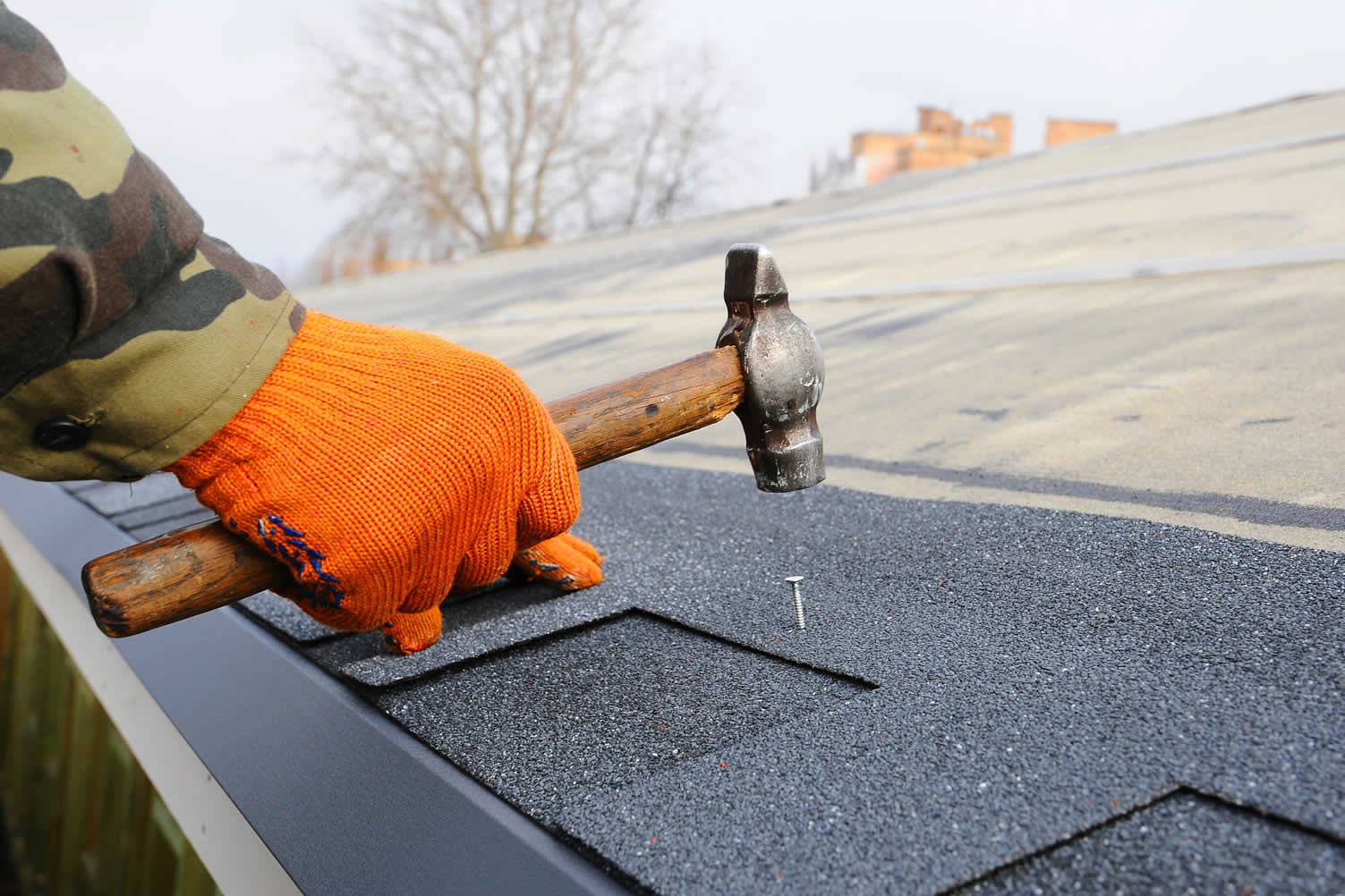 reroof your house