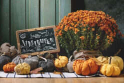 <span>landscaping (perennial flowers) – </span>Getting Ready for Fall (and Halloween)