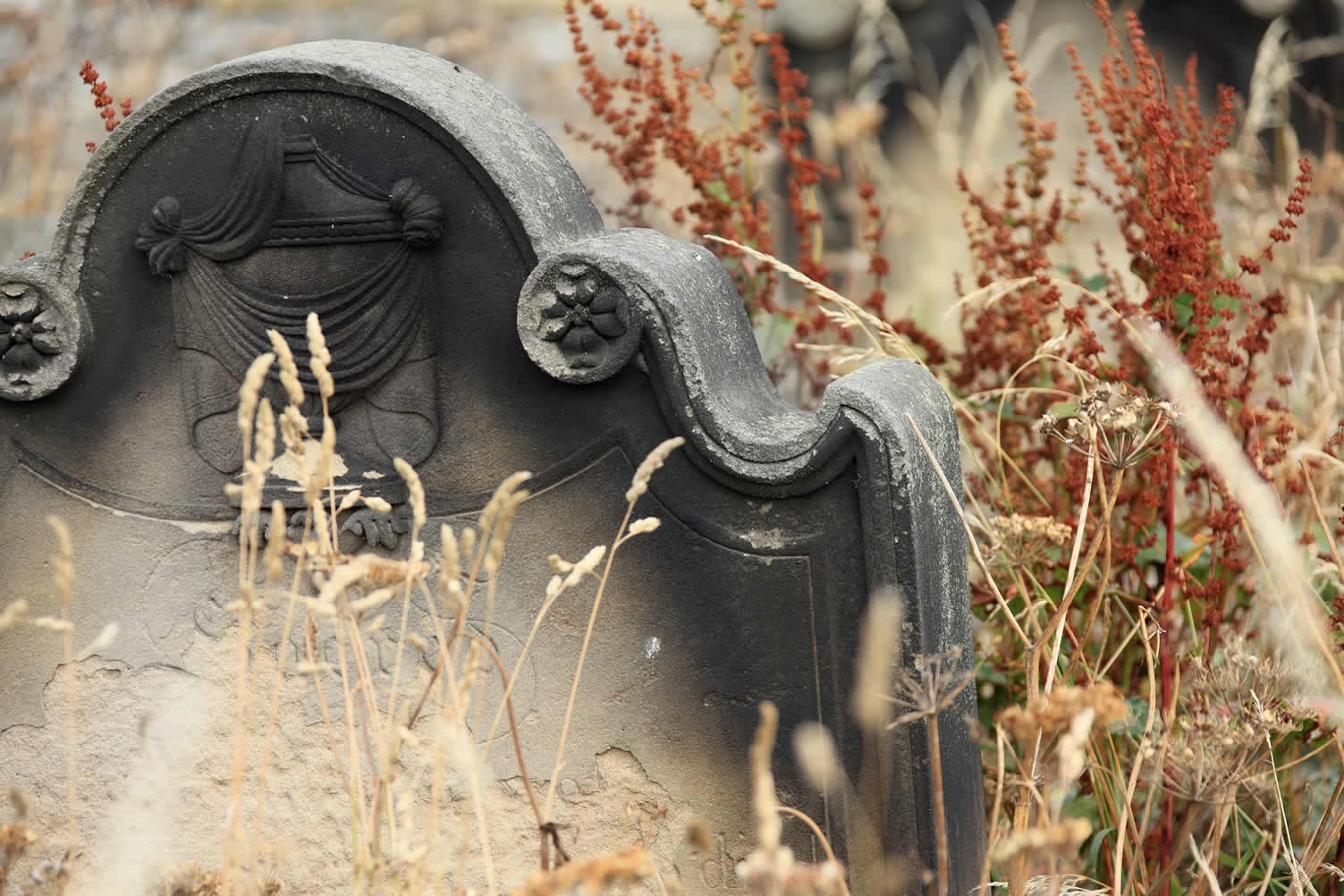 decorating a halloween cemetery