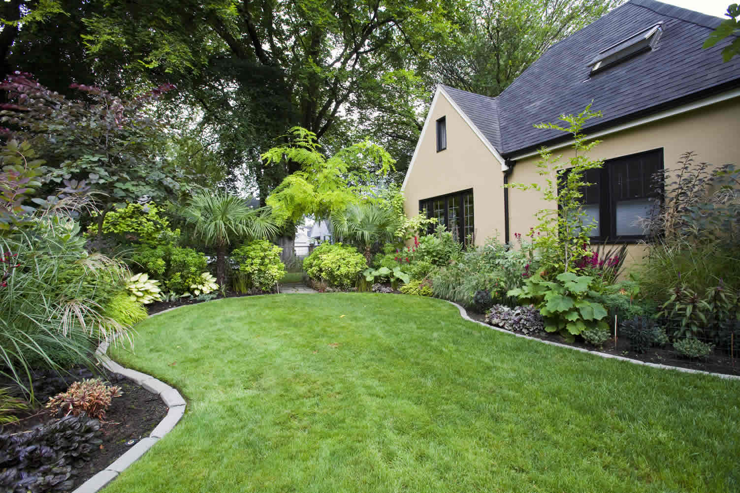 choose the best garden plants