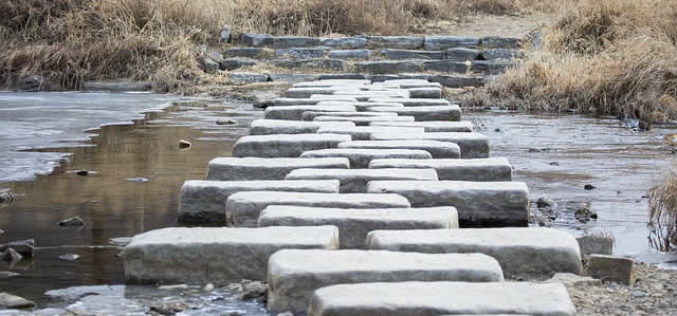 Spring Planning: Using Stepping Stones in Your Garden Landscape