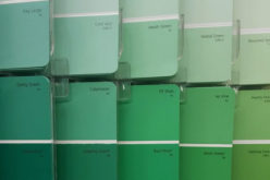<span>wall color paint sample</span> Let's Go With Something Green